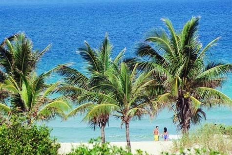 'Blau - Club Arenal - coconut trees by the beach, a relaxing view' Check our website Cuba Travel Hotels .com often for updates.