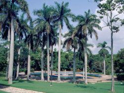 'Cuba Hotel - Cabañas Río Cristal  picture' Check our website Cuba Travel Hotels .com often for updates.